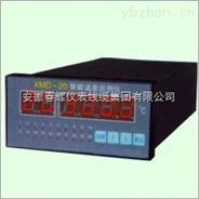 系列多路参数巡检控制仪(生产厂家)