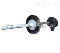WZP-430F化工防腐热电阻
