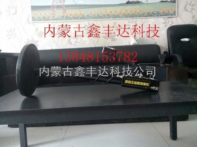 清水河探地王金属探测器