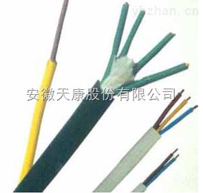 天康集团(售)产品名称:F46氟塑料电缆-KF46F46RP