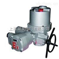 防爆电动装置