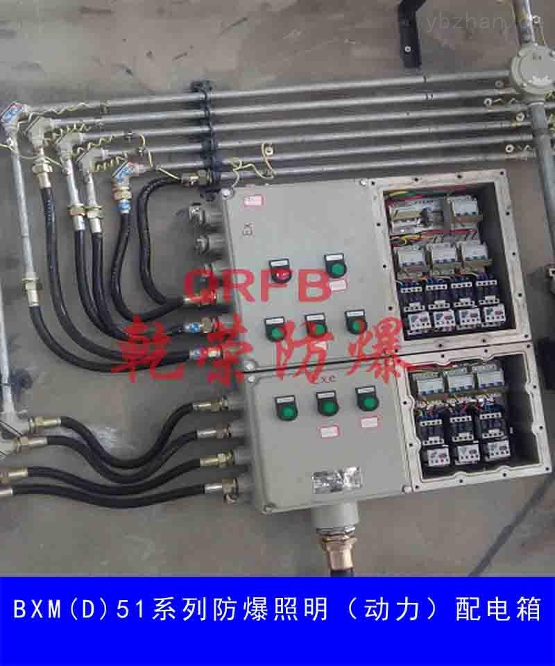 BXM(D)52系列防爆照明(动力)配电箱(IIB、IIC、DIP)