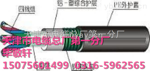 视频电缆128编SYV-75-5大厂制作