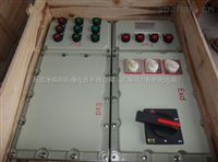 BXX-DIP粉尘防爆照明动力检修箱-定做
