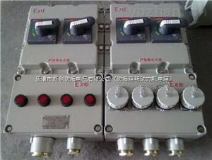 单回路测控仪防爆仪表箱定做(IICT4防爆等级)