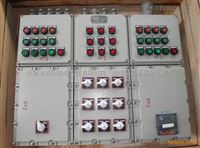 BXM51-T12K100BXM51-T12K100防爆照明配电箱/订制防爆配电箱报价