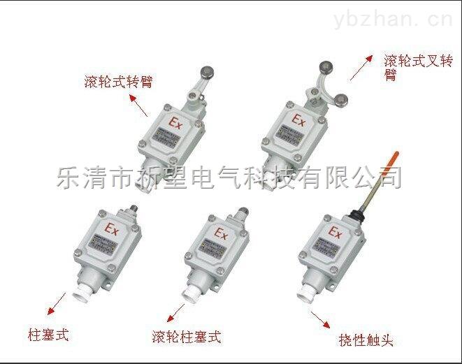 DLXK-15N防爆行程开关,挠性触头式防爆行程开关