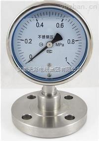不锈钢压力表YBF、YBFN系列