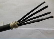FZ-KYJV  WDZ-KYJ(F)E清洁环保电缆