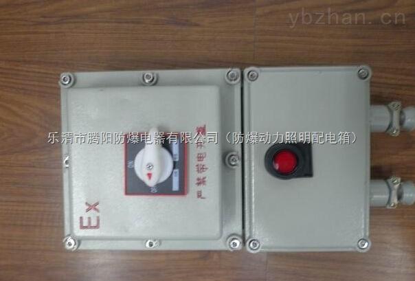 防爆漏电开关箱/防爆负荷隔离开关箱/防爆断路器