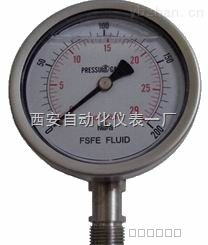 全不锈钢高压压力表,高压压力表