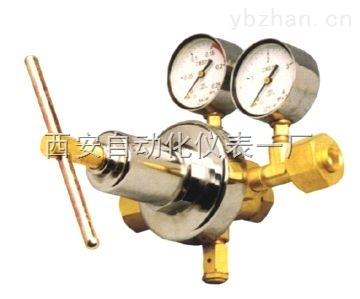 YQEG-224,乙炔减压器