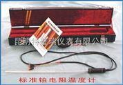 标准铂电阻温度计