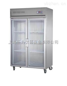 专业订做特殊规格恒温恒湿存储柜