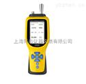 HY-GT-1000-EX泵吸式可燃气体检测仪