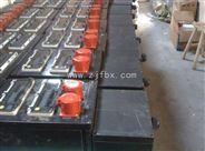 FXS防水防尘防腐电源插座箱