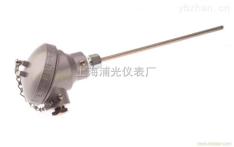 原厂直销 WRNK-131铠装热电偶