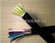 本安屏蔽電纜ZR-DJYPV-2二線組24對分屏蔽