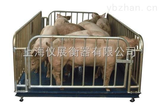 養殖場活畜稱重電子秤2噸動物電子秤直銷