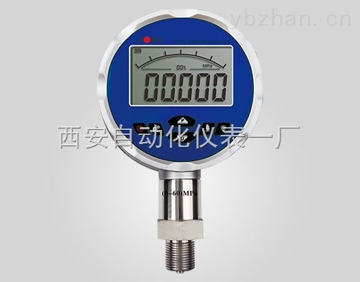 DP385精密数字压力表
