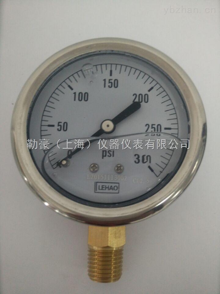 半钢充油耐震压力表