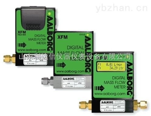 LDX-XFM-數字質量流量計