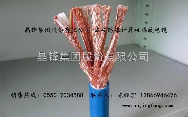 IA-DJYPVRP22 1*3*1.5本安计算机电缆