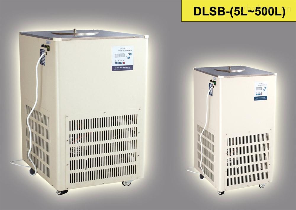 DLSB-5L/25°低温冷却液循环泵