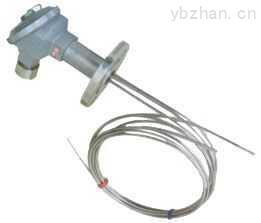 WRNK-430D铠装多点热电偶