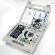 LDX-DG/pH3110-手持式PH/mV测试仪/便携式酸度计/手持式酸度计
