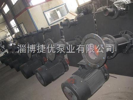 厂家直销ZJL(YW.YZ)型液下渣浆泵
