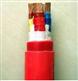 YGC硅橡胶绝缘护套电力电缆