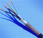 DJYPV-2*1.0计算机阻燃屏蔽电缆
