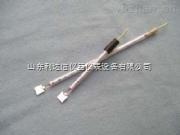 LDX-B9917-鉑片電極/鉑電極