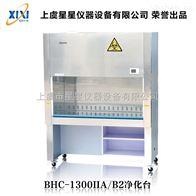 BHC-1300IIA/B2半排风二级生物安全柜厂家直销 产品用途