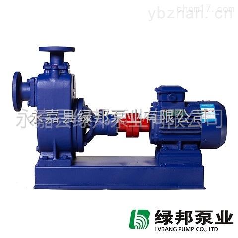 厂家直销CYZ-A防爆自吸油泵