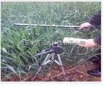 叶面积指数测量仪(冠层分析仪) 型号:YKN-ECA-GG04 库号:M254861