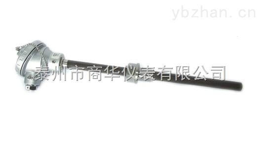 雙支耐磨熱電偶WRN2N-231