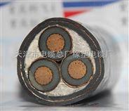 矿用高压电力电缆YJV22-6/10kv 3*25