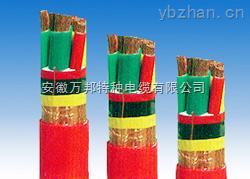 ZR-BPGGP2-0.6/1KV 阻燃耐高温变频器屏蔽电缆