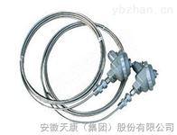 wzp2-13套管式铠装热电阻wzp2-13