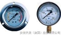YZ-100不銹鋼真空壓力表
