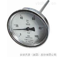 防爆數字溫度計wzpb--241s