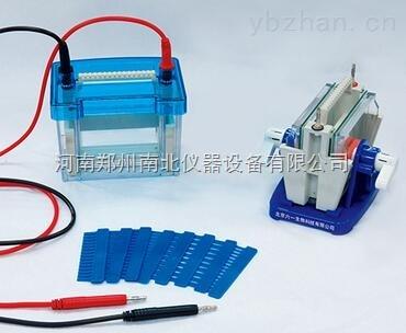 DYCP-44P型快速凝胶电泳仪。