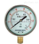 耐震双刻度压力表|双刻度压力表刻度|双刻度压力表量程接头