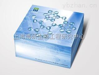 大鼠抗利尿激素(ADH)ELISA试剂盒