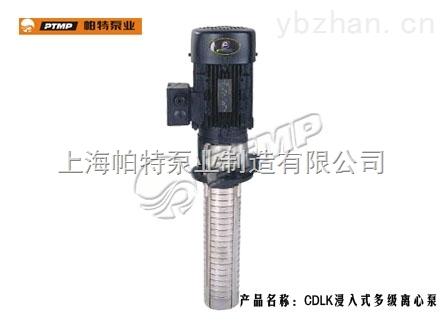 CDLK-CDLK系列浸入式多级离心泵