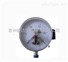 Y-100优质供应不锈钢高精度 电接点压力盛达