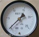 膜盒压力表YE-100B推荐厂家