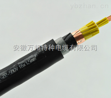 WDZN-KYJYP2  WDZN-KYJYP2-23清洁环保电缆
